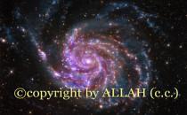 İnsanların Telif Hakkı Var da, Allah'ın Yok mu?
