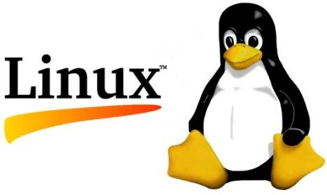 Kurumsal Proxy Server Kurulumu ve Yönetimi